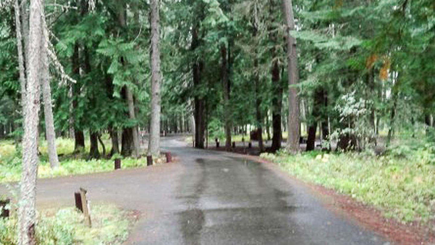 Yaak River Campground