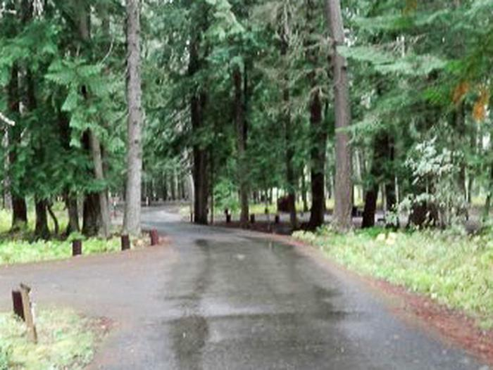 Preview photo of Yaak River Campground (MT)