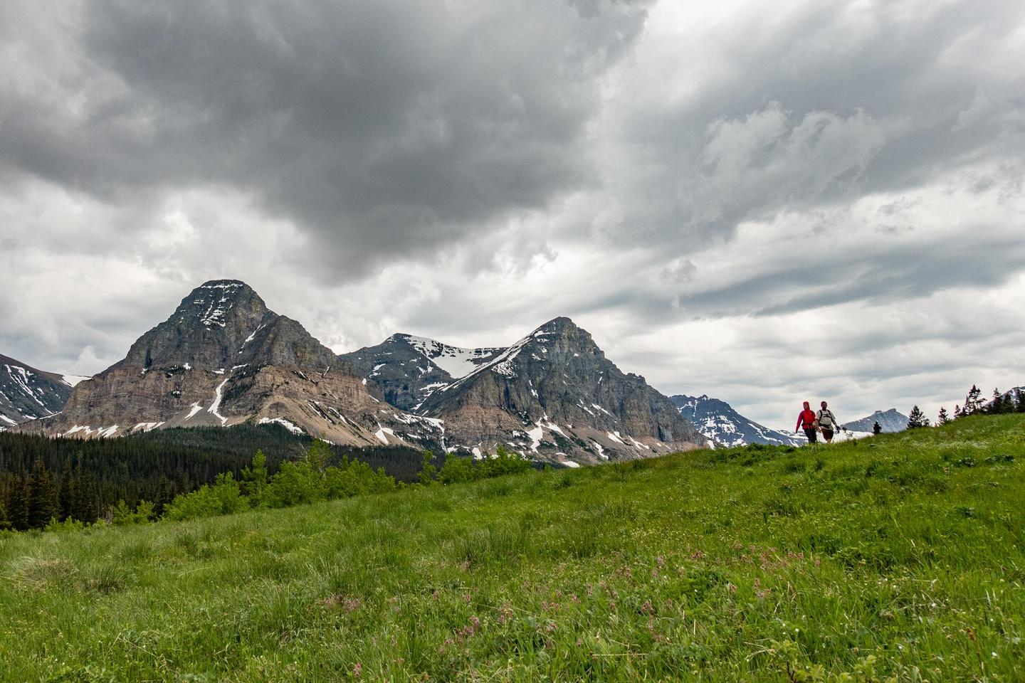 Hiking in Cut BankTwo people walk down a trail near the Cutbank Campground under cloudy skies. Rocky snow capped peaks rise in the background and the foreground is filled with thick grass.