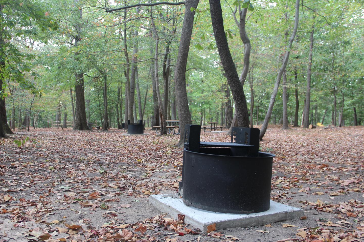 The new grills located on each site at Greenbelt Park campground
