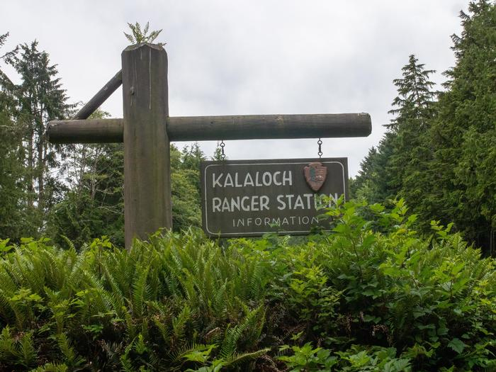 Kalaloch Ranger Station 01Kalaloch Ranger Station sign