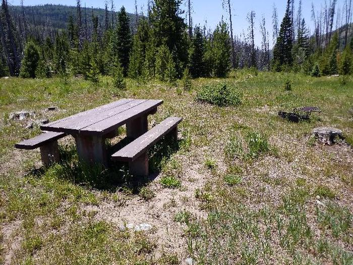Seedhouse Group Site, one of several picnic tables & fire rings in meadow