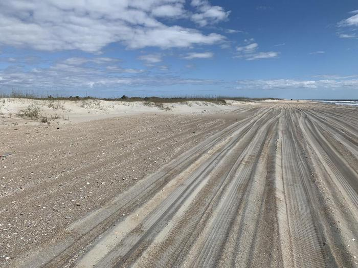 South Core Banks -- wide beach for campingThe wide beaches of South Core Banks allow for dispersed camping directly on the beach.  Choose your spot on the beach, seaward of the dunes, and relax.