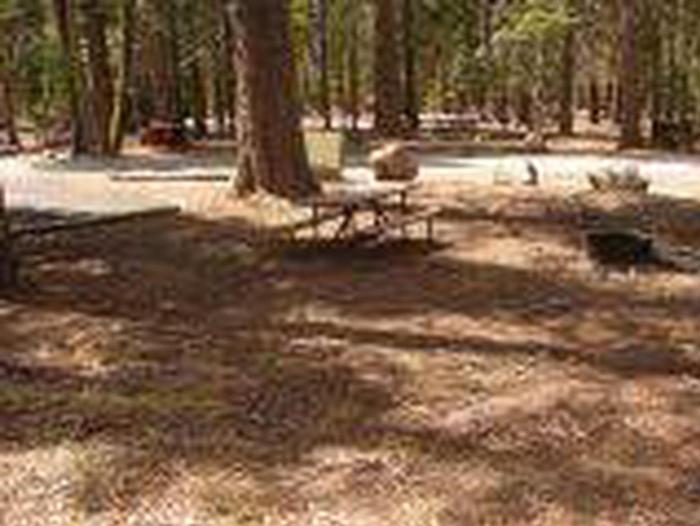 Manzanita Lake Campground Site C13Site, Loop: Site C13, Loop C