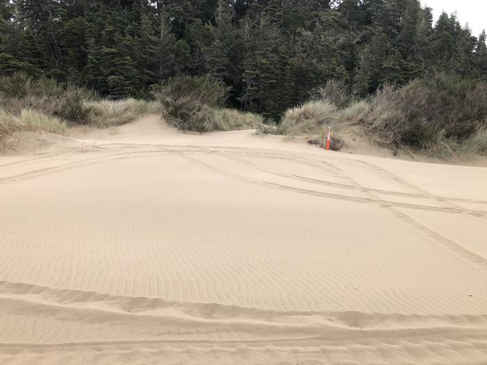 Umpqua Sand Camp Site #48