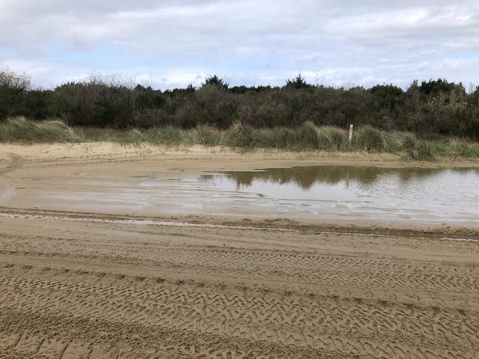 Umpqua Sand Camp Site #56