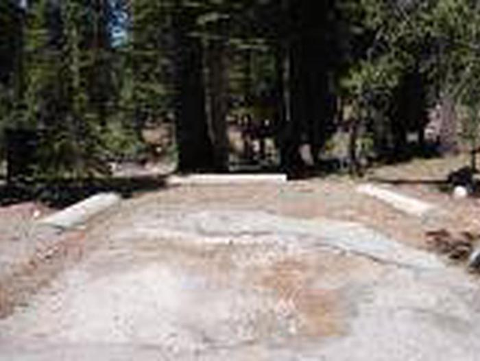 Site B16Site, Loop: Site B16, Loop B