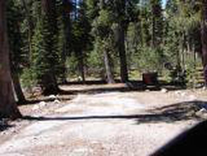 Site B17Site, Loop: Site B17, Loop B