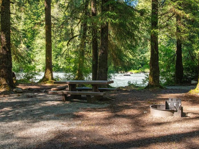 Queets Campground 01A riverside campsite in the Queets Campground.
