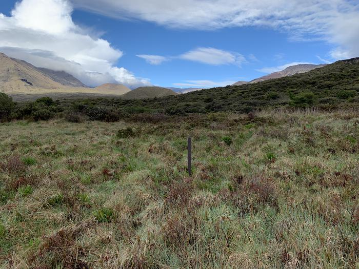 a brown stake in the middle of a grassy field with mountain viewPalikū tent sites are located in a grassy field