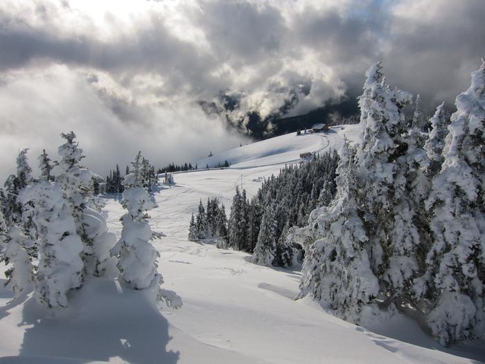 Hurricane RidgeA fresh layer of snow covers Hurricane Ridge in the Olympic Mountains.