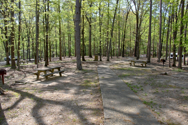 Cooper's Branch #2 Picnic Area