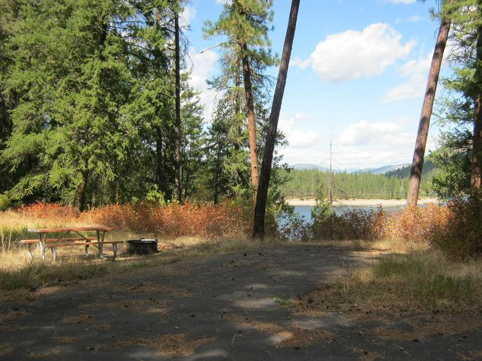 Site 7. Back in. Trees and river in the background.