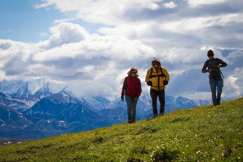 three people walking on a hillsideHikers walk across the tundra on a pleasant summer day in Denali.