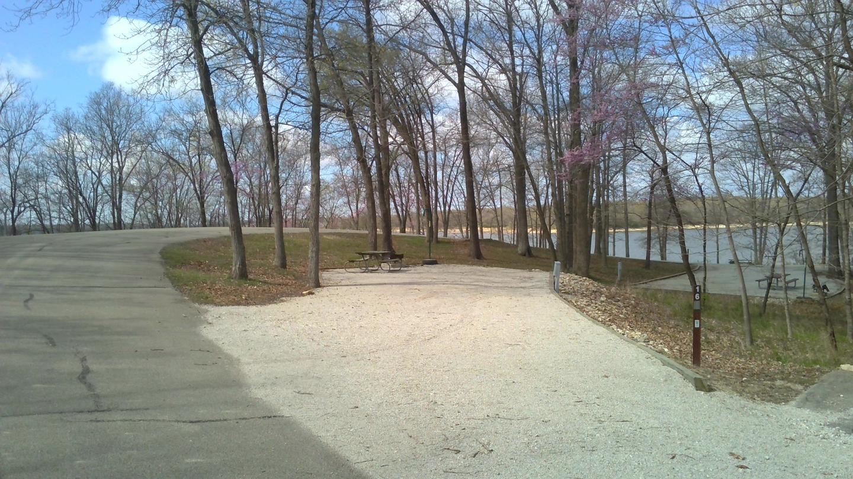 Site 16 Spring 2021