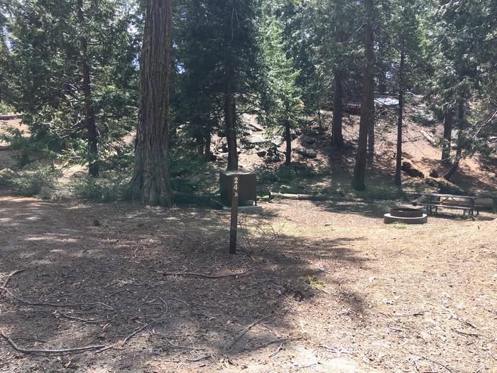 Crystal Springs Site 24