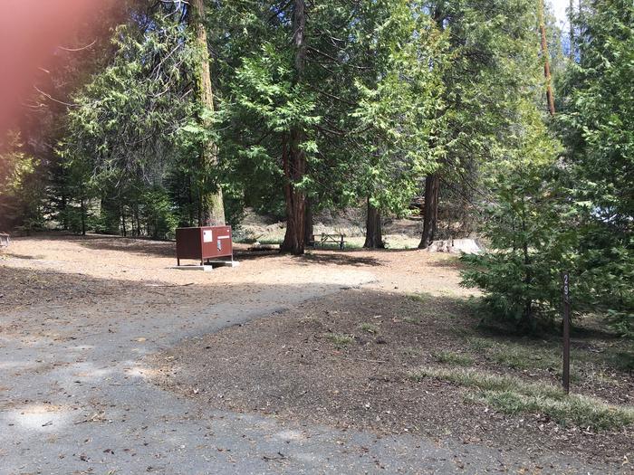 Crystal Springs Site 29