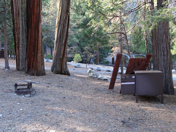 Sheep Creek Site 41