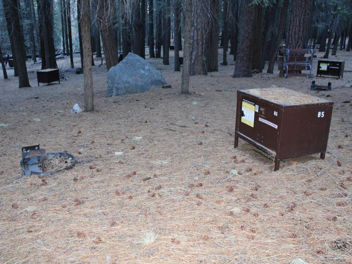 Sheep Creek Site 85