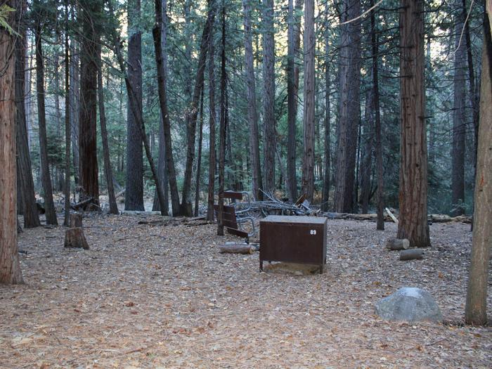 Sheep Creek Site 89
