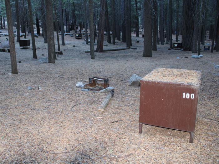 Sheep Creek Site 100