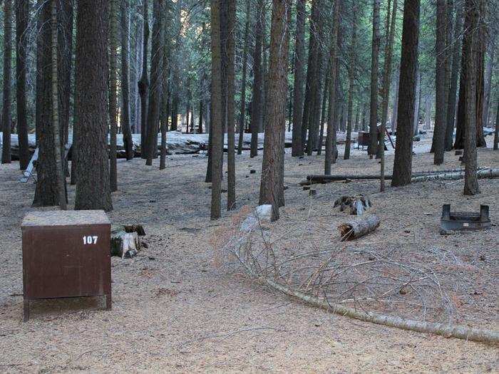 Sheep Creek Site 107