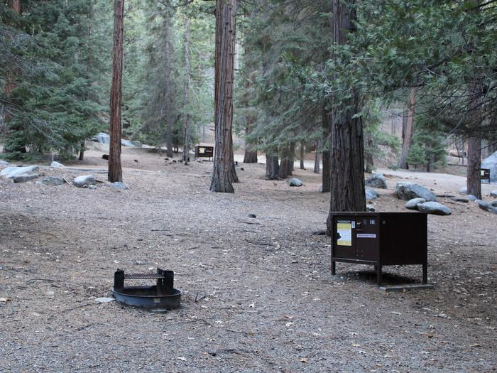 Sheep Creek Site 111