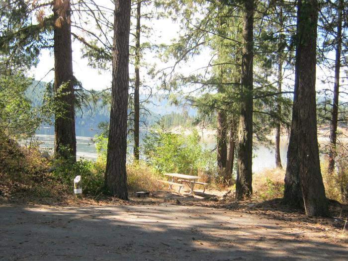 Site 8. Walk in. Trees and lake in the background.