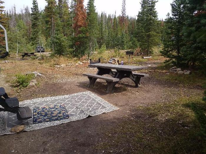 Ryan Park Campsite 12 Preview