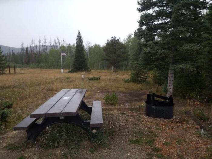 Ryan Park Campsite 17 Preview
