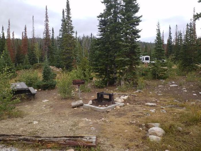 Ryan Park Campsite 22 Preview