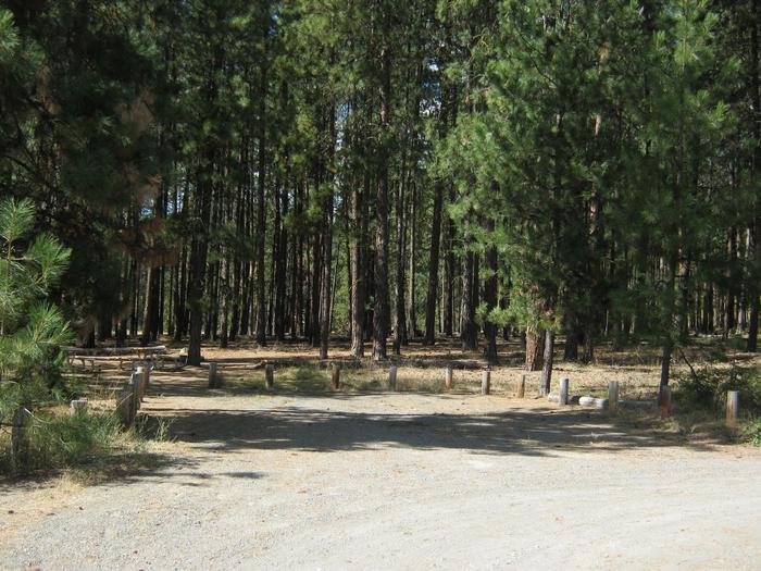 Site 7. Back in. Trees in the background.