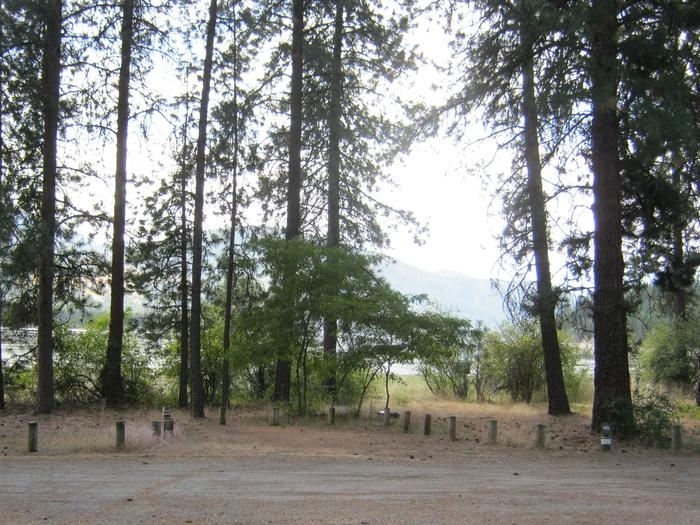 Site 10. Back in. Trees and hill in the background.