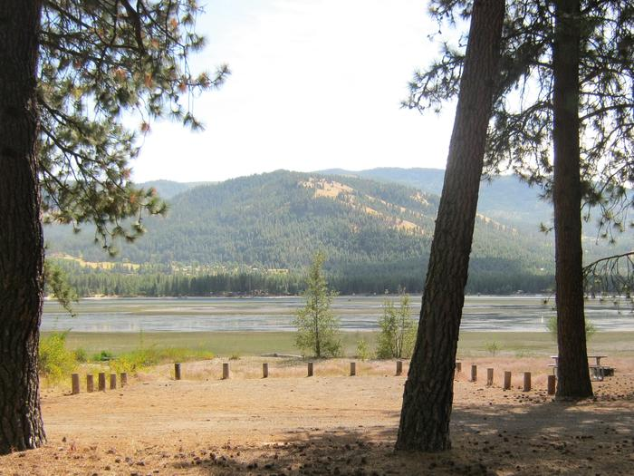 Site 11. Back in. Trees and lake in the background.