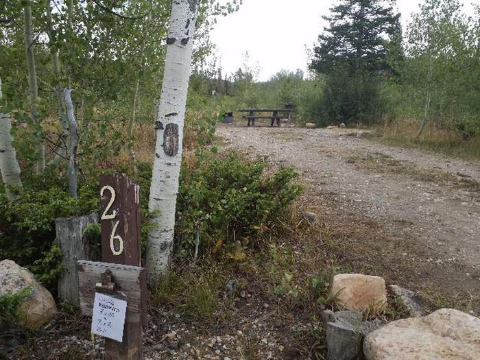 Ryan Park Campsite 26 Photo 3