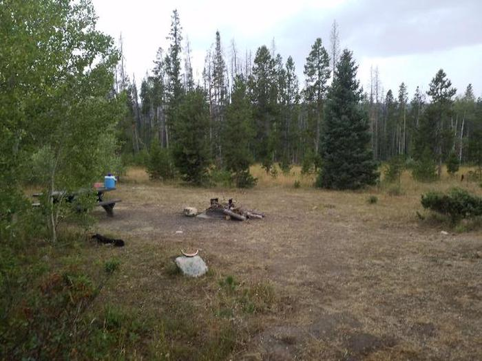Ryan Park Campground Site 31 Preview