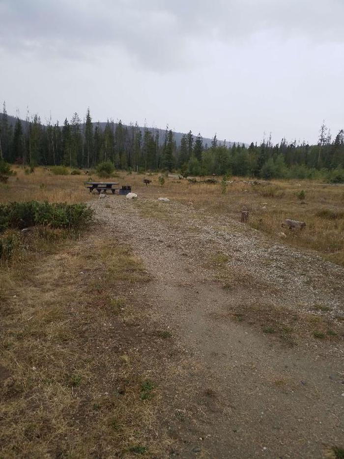 Ryan Park Campground Site 32 Photo 2