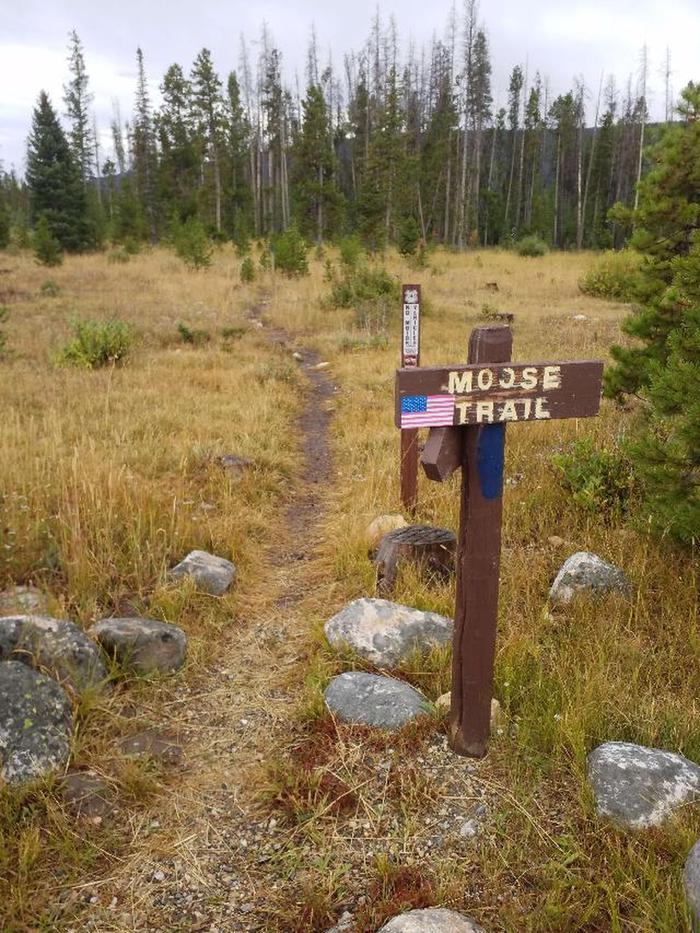 Ryan Park Moose Trail 1
