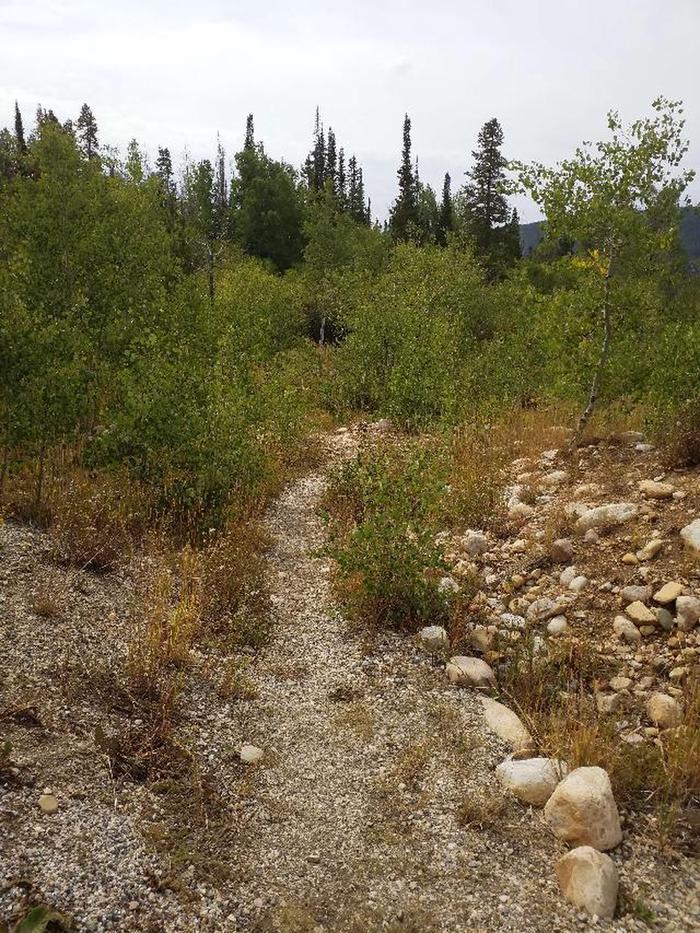 Ryan Park Moose Trail 2
