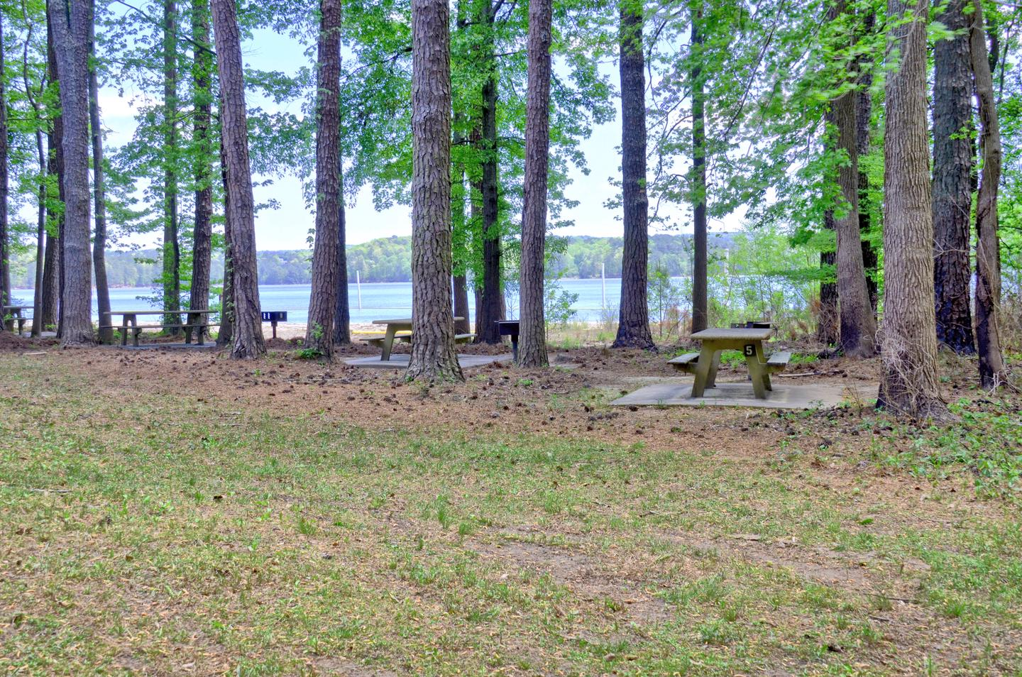 Sweetwater Day Use Picnic Area Near Beach