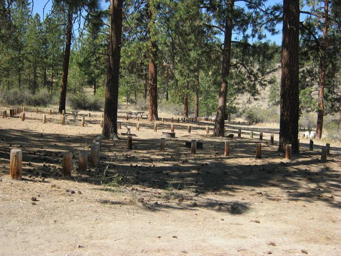 Preview photo of Jones Bay Campground