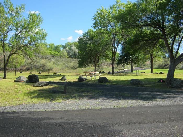 Spring Canyon Campground. Trees in the background.