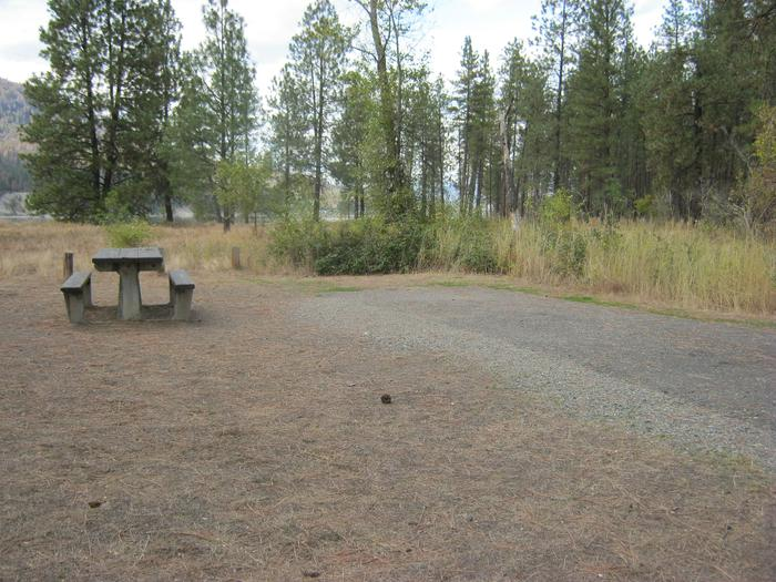 Kettle Falls Campground with trees and bushes in the background.