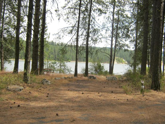 Site 4. Back in with trees and lake in the background.