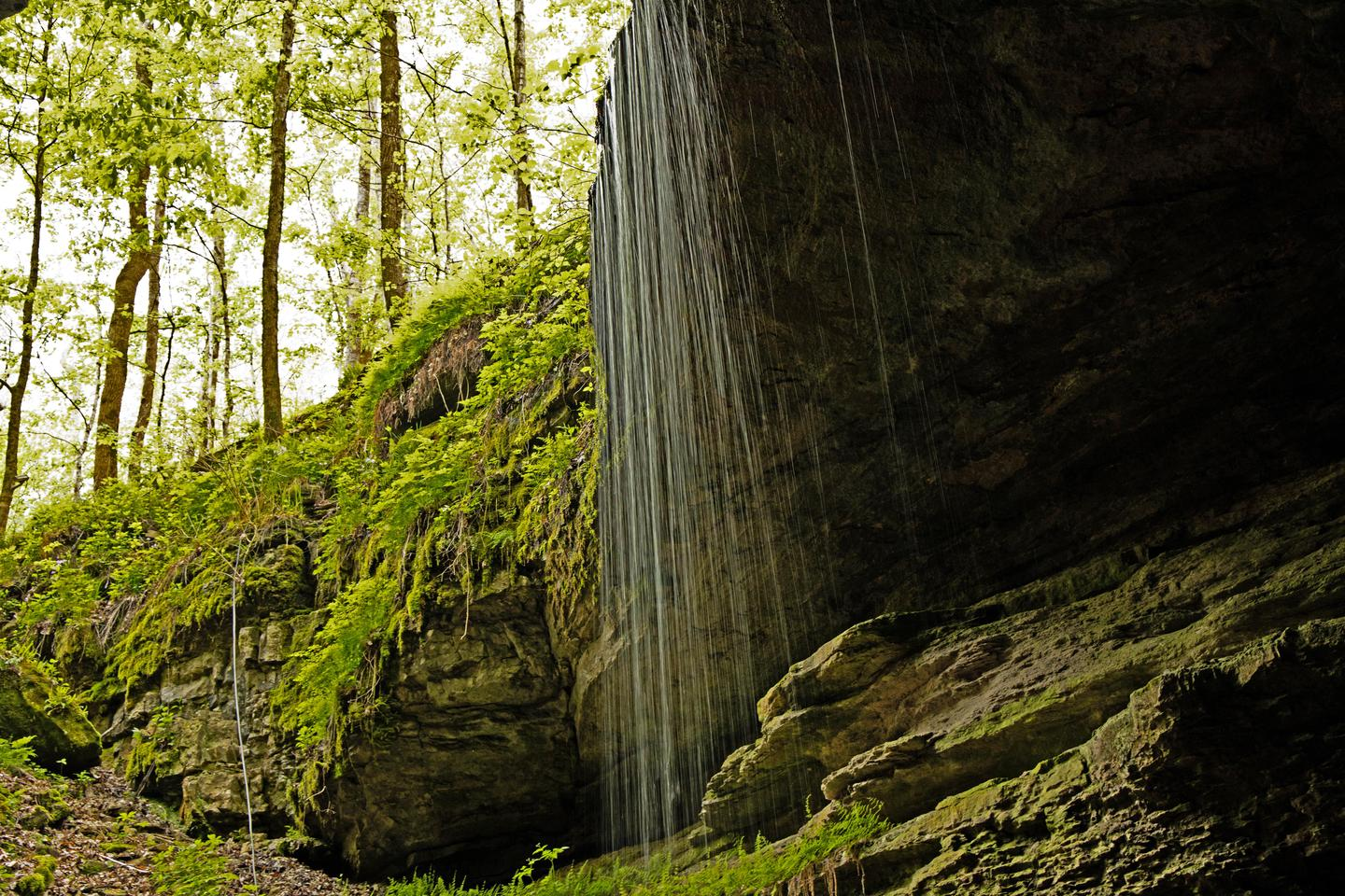 Preview photo of Mammoth Cave National Park