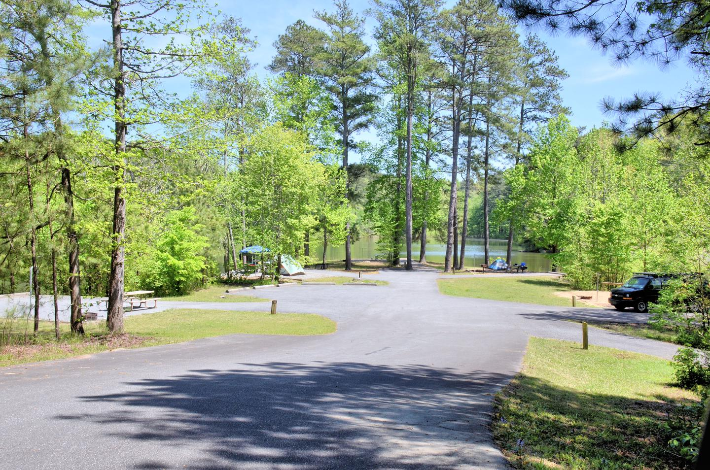 Payne Campground Tent Sites