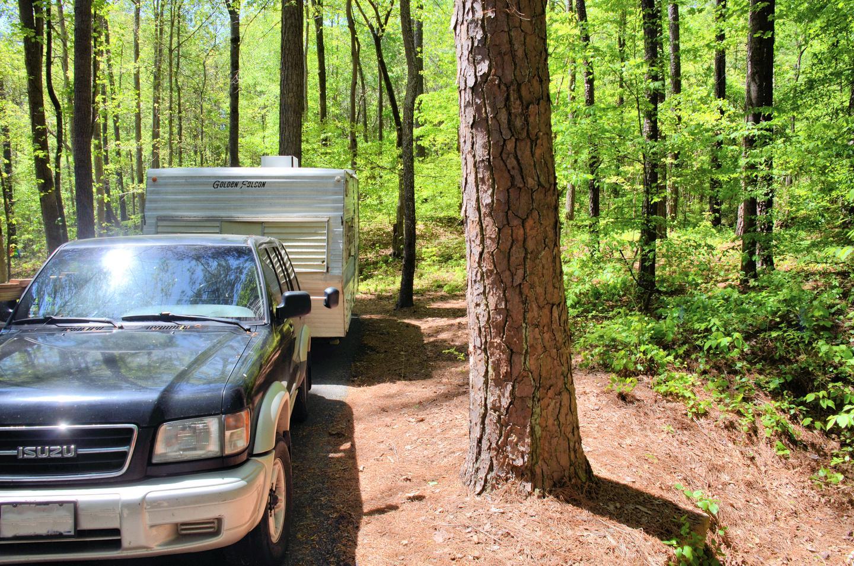 Payne Campground Site 054-2Payne Campground Site 054