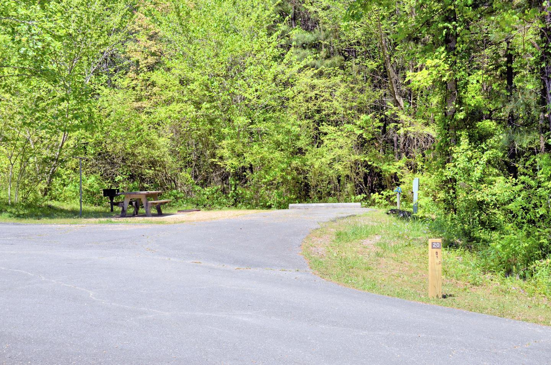 Payne Campground Site 020