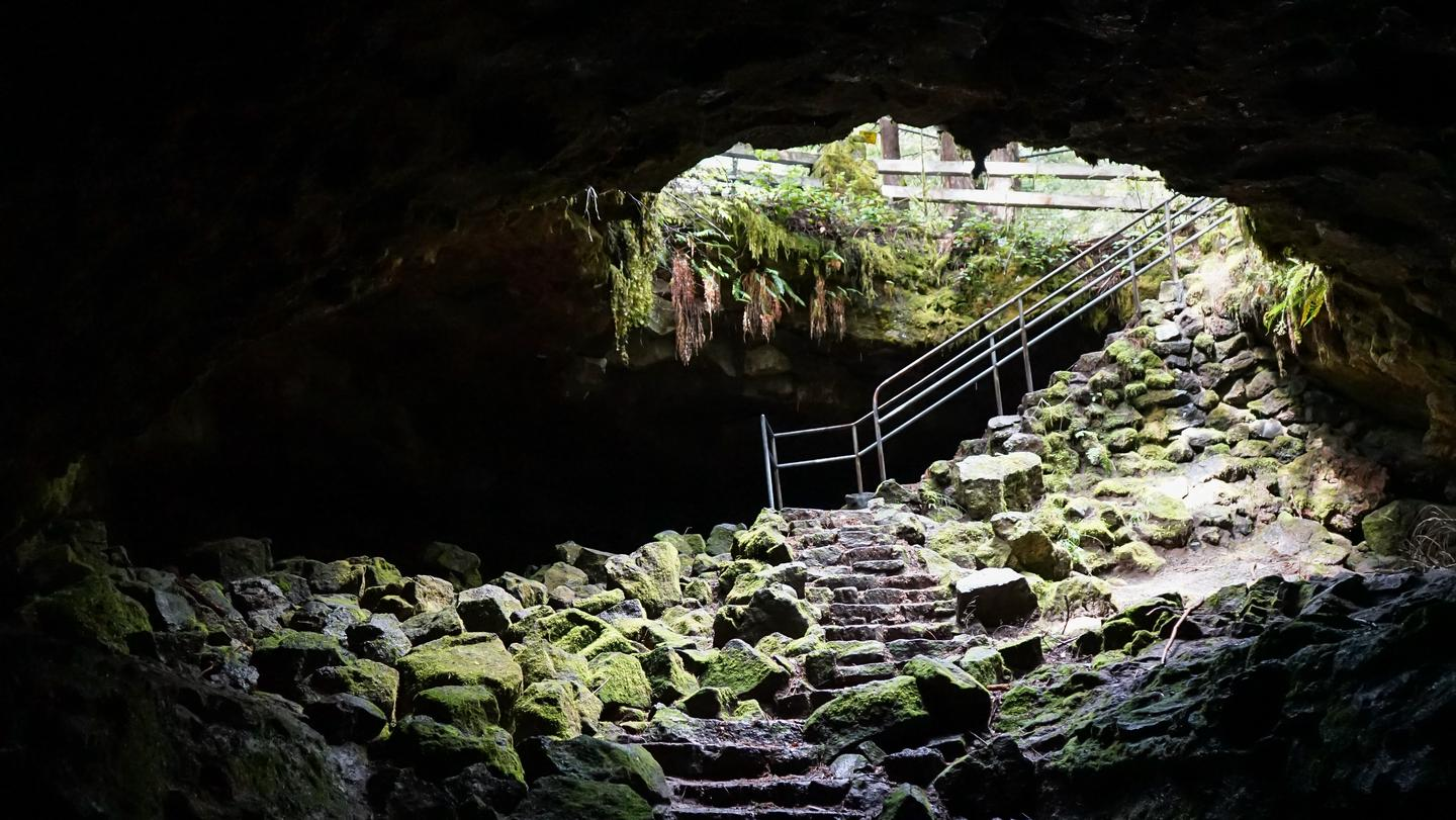 A dark cave has light trickling in from outside, illuminating a small ladder.The exit ladder from the Upper Cave is shown with light from one of the few skylight holes in Ape Cave.