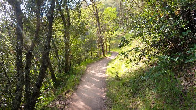 Magnolia Ranch